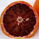 Blood Orange Pre-Mixed Specialty