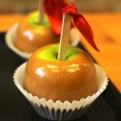 Caramel Apple Pre-Mixed Specialty