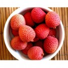 Lychee Pre-Mixed