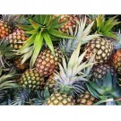 Pineapple Pre-Mixed